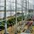 Rat zorgt opnieuw voor stroomstoring in Flevopolder
