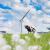 Drie knelpunten op elektriciteitsnet Liander