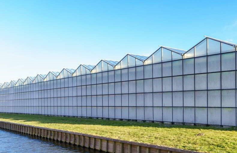 Vraag naar exra energie in Neerijnen en Bommelerwaard